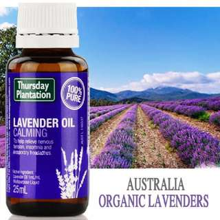 (In Stock)Thursday Plantation 100% Pure Lavender Oil 25ml 100%純天然薰衣草按摩精油