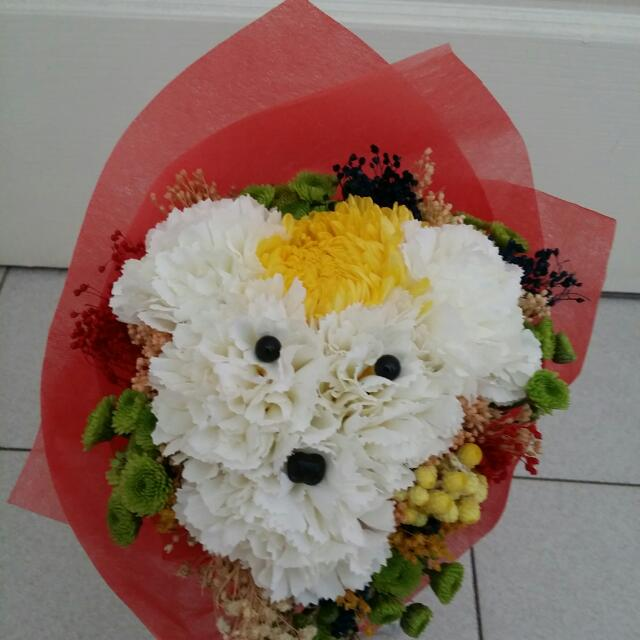 Artifical White Carnation Mix With Dry Flower Dog Bouquet, Bulletin ...