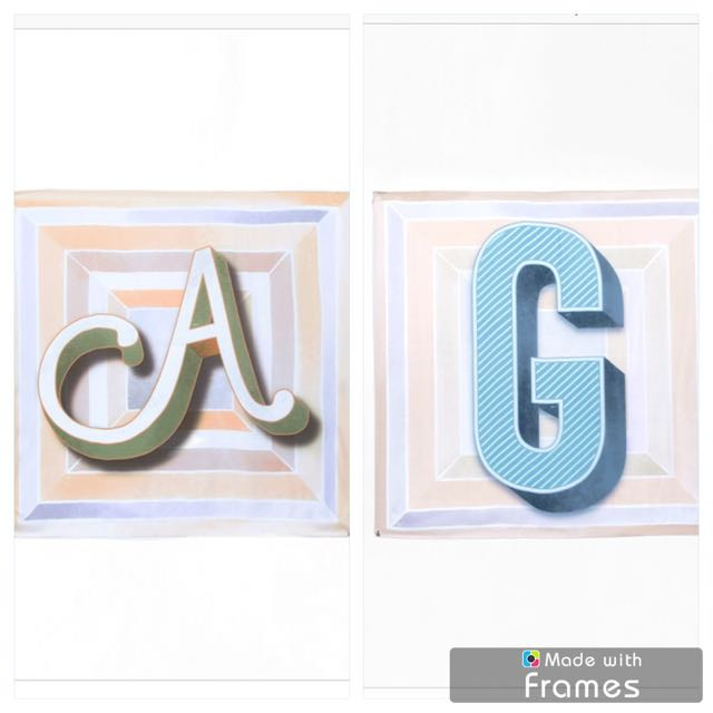 Authentic New Duckscarves Alphabet A & G