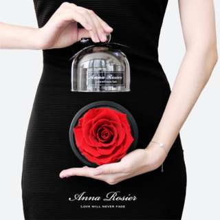 Valentine Anna Rosier Glass Flower Display Bell Jar Dome Immortal Preservation Love shape Glass Jar Rose Colour