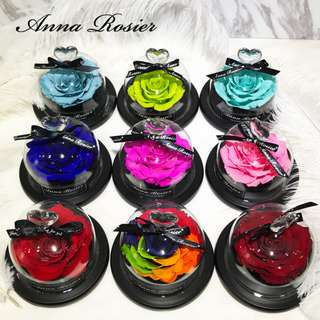 Anna Rosier Glass Flower Display Bell Jar Dome Immortal Preservation Love shape Glass Jar Rose Colour Valentine