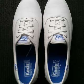 Brand new keds white leather champions never worn