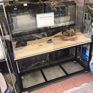 4ft terrarium tank and stand