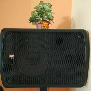 Pair of Martin Roland Speakers and stands