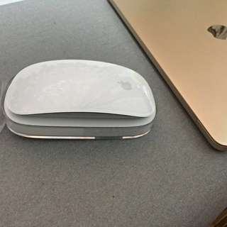🚚 Apple Mouse I 代