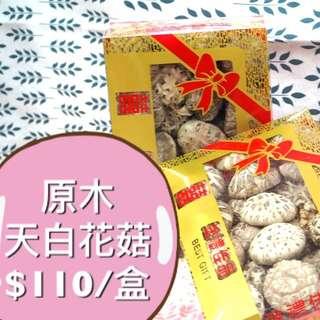 超大粒原木天白花菇 300g(半斤) 新年必備 上環海味店 30年歷史