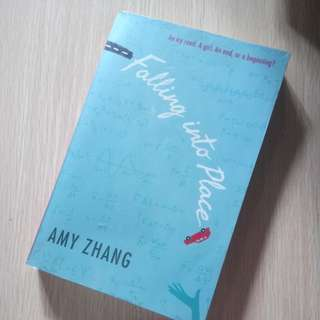 Falling into Place (novel) by Amy Zhang