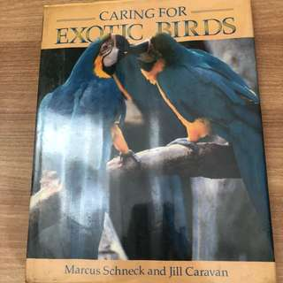 Caring for Exotic Birds