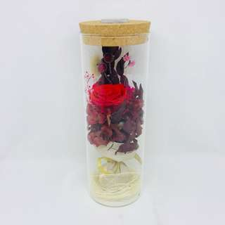 Preserved Rose (Red) in Glass Bottle