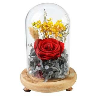 Valentines Day Preserved Rose in Glass Jar
