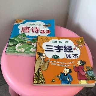 Chinese Story Books (2 for $5)