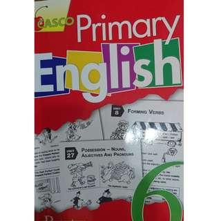 P6 CASCO ENGLISH