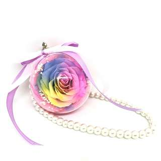 Preserved Rose c/w Chain (Rainbow)