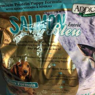 Salmon puppy dog 🐶 food