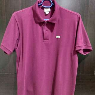 Lacoste Auth polo