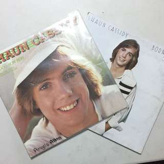 Shaun Cassidy Vinyl Records