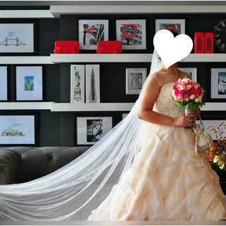 PreLoved Wedding Gown