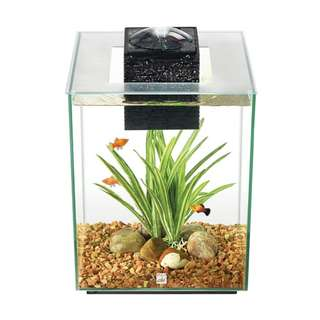 New Fluval Chi 19L Aquarium Tank
