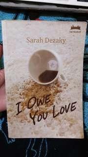 Novel I Owe You Love