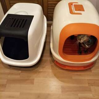 Cat Litter Boxes x 2