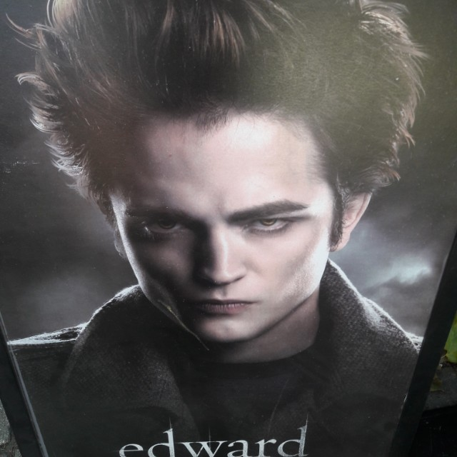 Edward picture, twilight. 3ft by 2