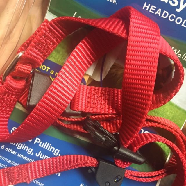 Head collar