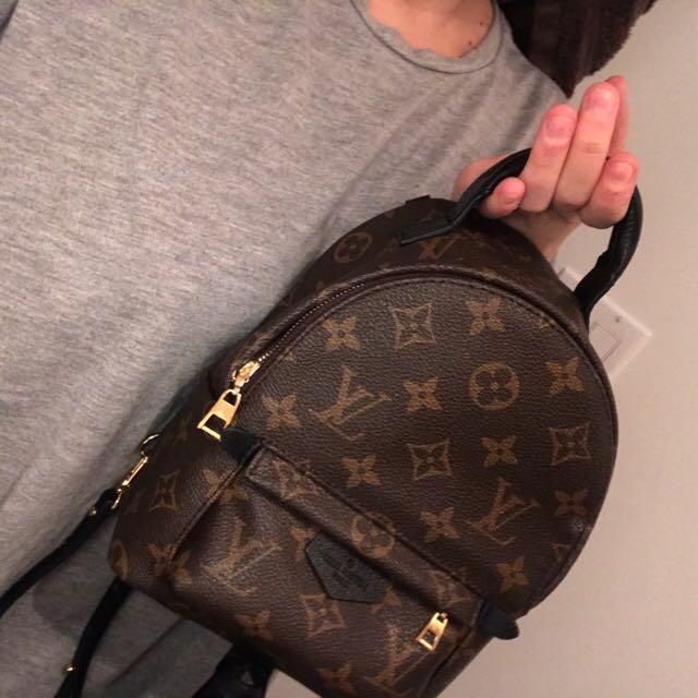 686bb60e6f0d Louis Vuitton Palm Springs mini backpack