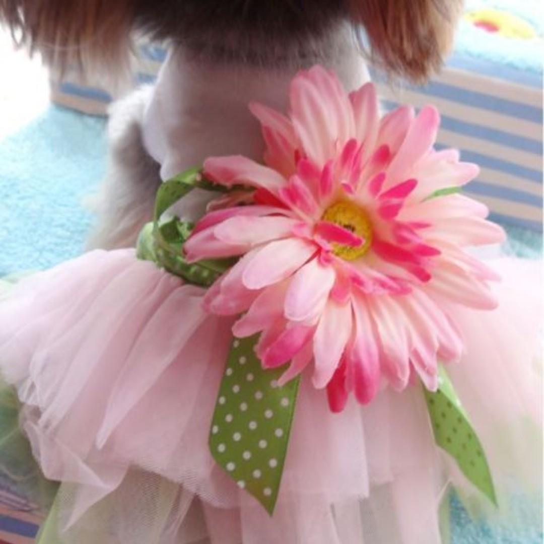 Pet Dog Cat Flower Gauze Tutu Skirt Dress