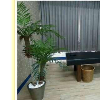 人造椰子樹,適合東南亞風情擺設