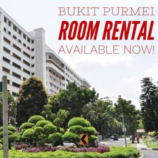 One Bedroom Rental @ Bukit Purmei