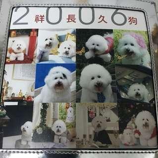 鄺美雲cash 2006 年珍藏月曆