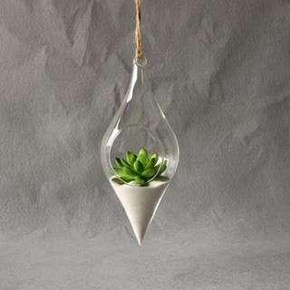 [READY STOCK!] Hanging Glass Terrarium