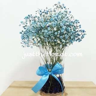Blue baby breath in vase