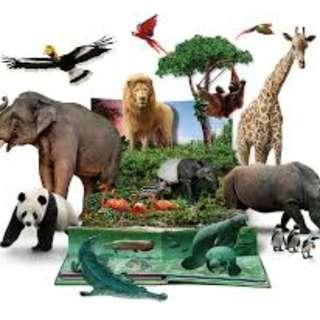 Zoo|Night safari|River|Birds Park