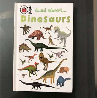 FREE POSTAGE Mad about Dinosaurs