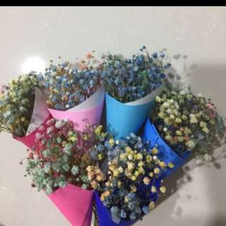 Fresh mini baby breath flower bouquet