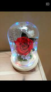 Rose in glass jar with Led Light