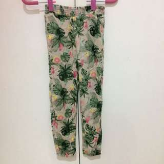Parrot Tropical Bottoms for Girls
