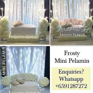 Mini Pelamin