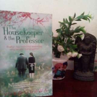 Novel the housekeeper and the professor