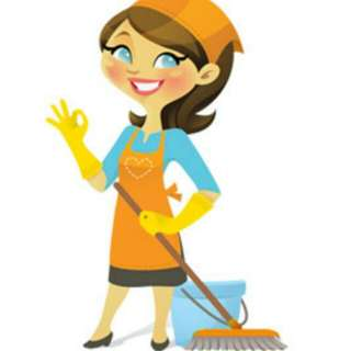 Domestic helper needed