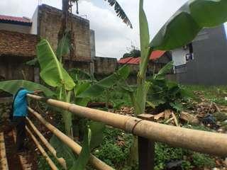 Tanah Kosong - Villa Depok