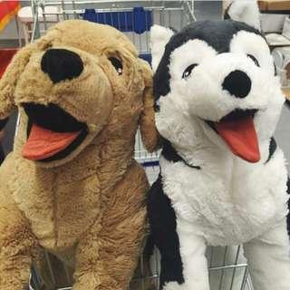 Golden Retriever and Husky Plush Toys