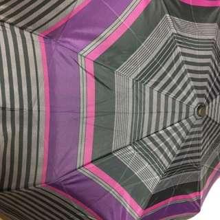 Rainstory自動開闔折疊雨傘