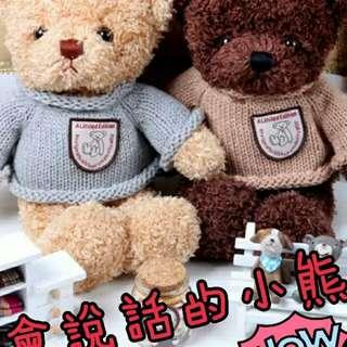 【🔊會錄音說話的泰迪熊】韓-泰迪熊情侣小熊🐻公仔娃娃 七夕情人節 送禮 生日禮物 告白 客製化【兩色30-50公分】