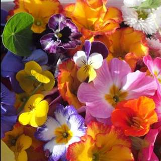 Homegrown Edible Flowers