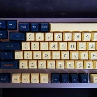 Signature plastic SA SP pebumbra r2 keycap