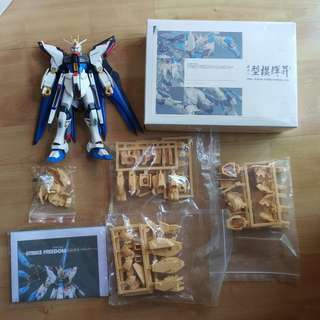 MG Strike Freedom Gundam + MsB resin conversion kit