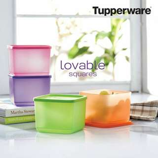 Tupperware small square rounds