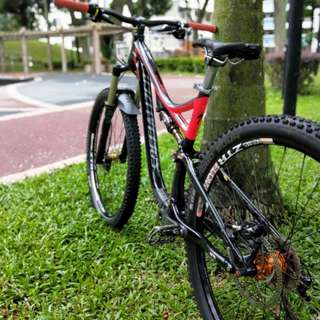 Specialized Stumpjumper Expert Evo 29er